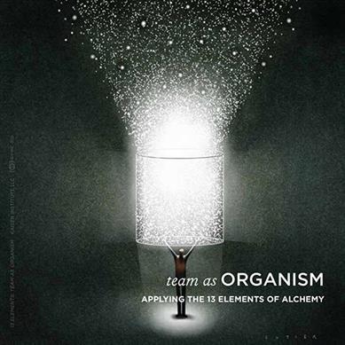 13 Elements: Team as Organism